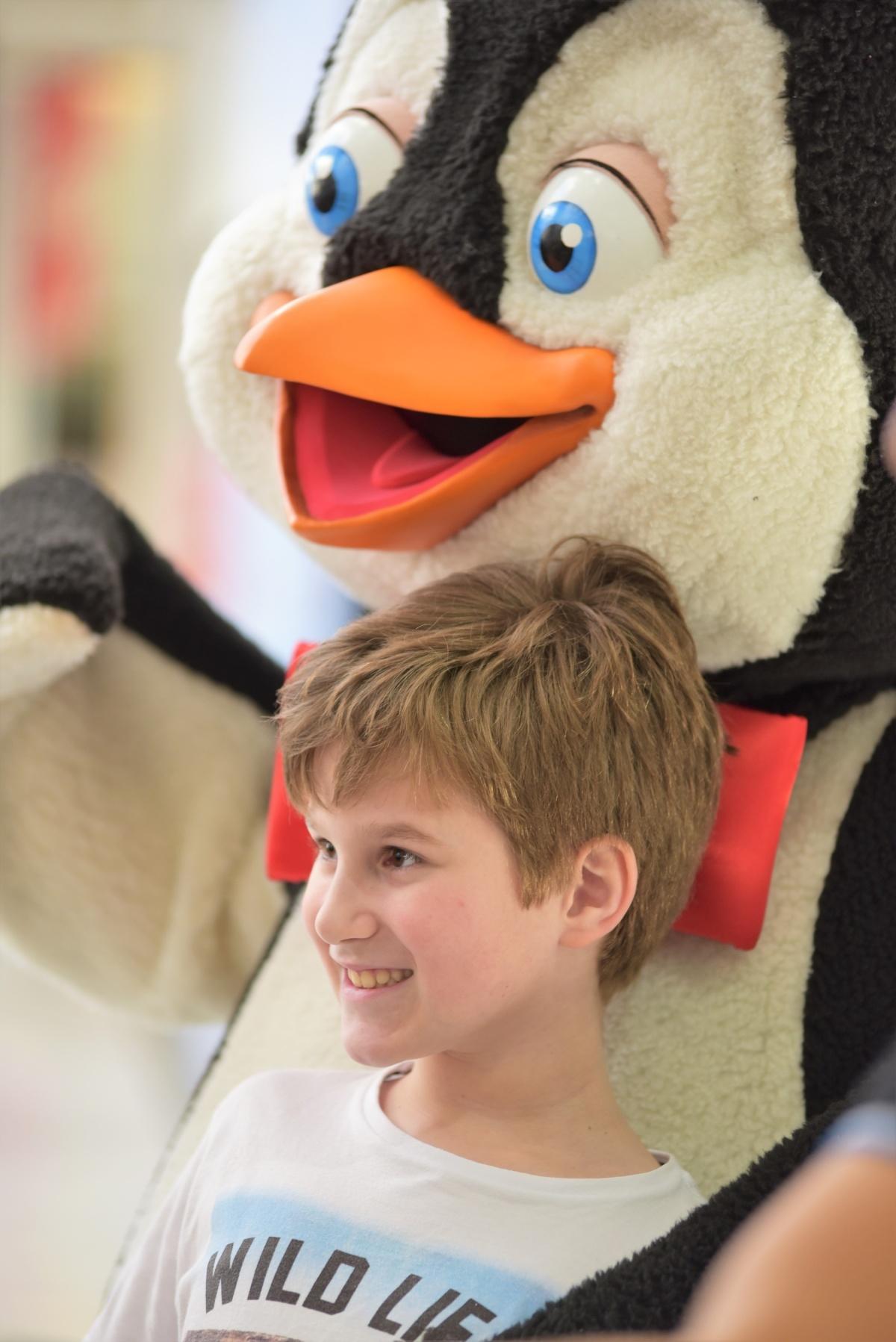 Irmãos pinguins aquecem sábados noCatuaí